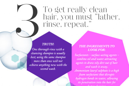 Beauty Myths Infographic