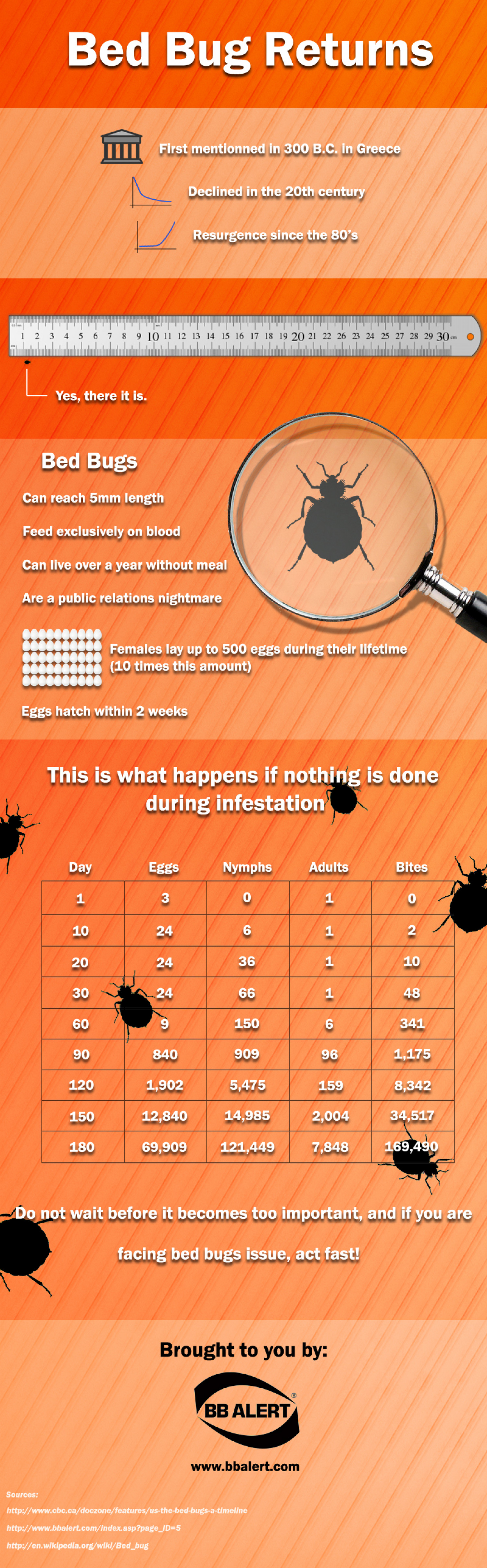 Bed Bug Returns Infographic
