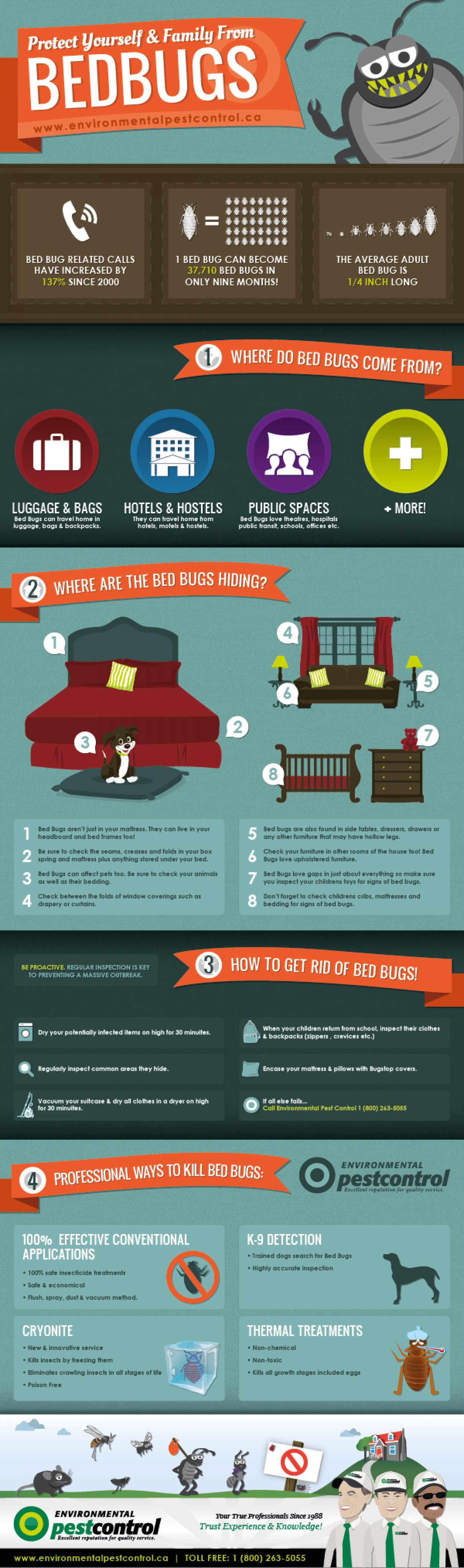 Bed Bugs - Protect Yourself and Your Family! Infographic