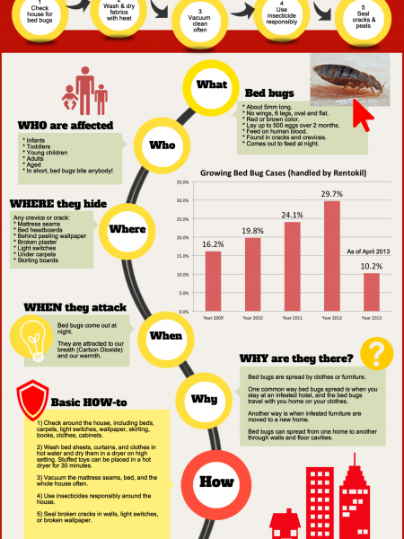 Bed bugs menace Infographic