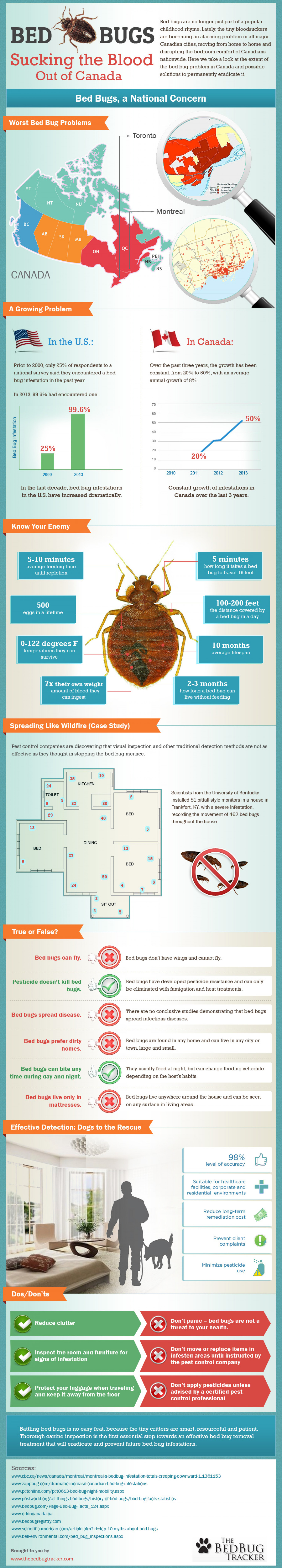 Bed Bugs, Sucking the Blood Out of Canada Infographic