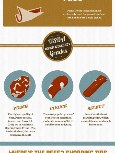Beef 101: A Guide to What 25% of Americans Eat Everyday  Infographic
