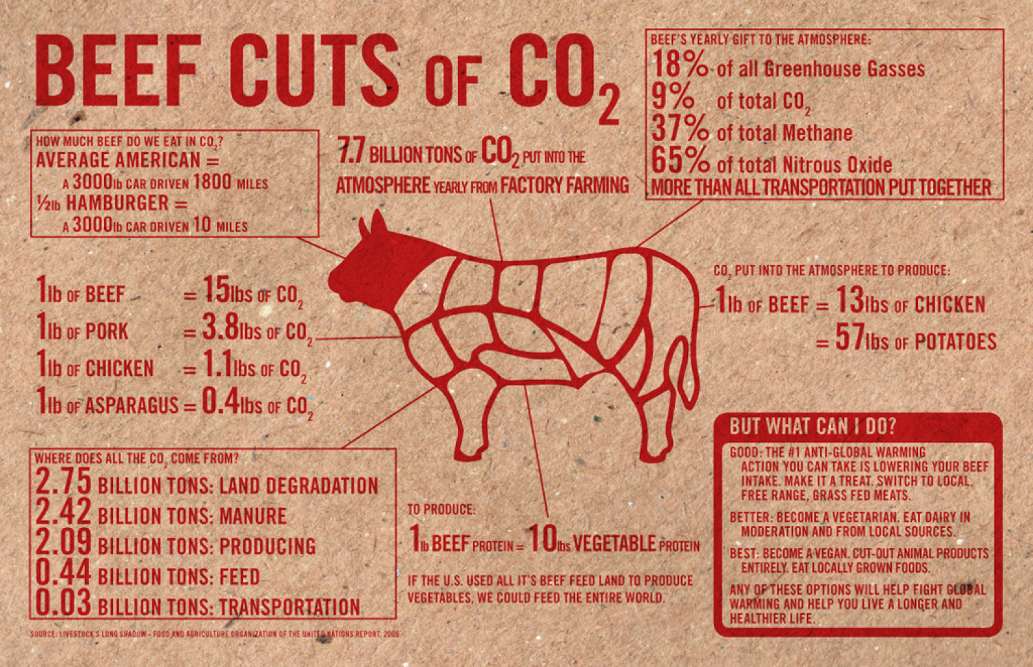Beef Cuts of CO2 Infographic
