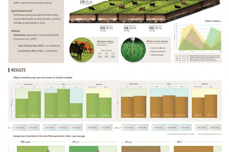 Beef heifers performance under continuous grazing on grassland structure Infographic