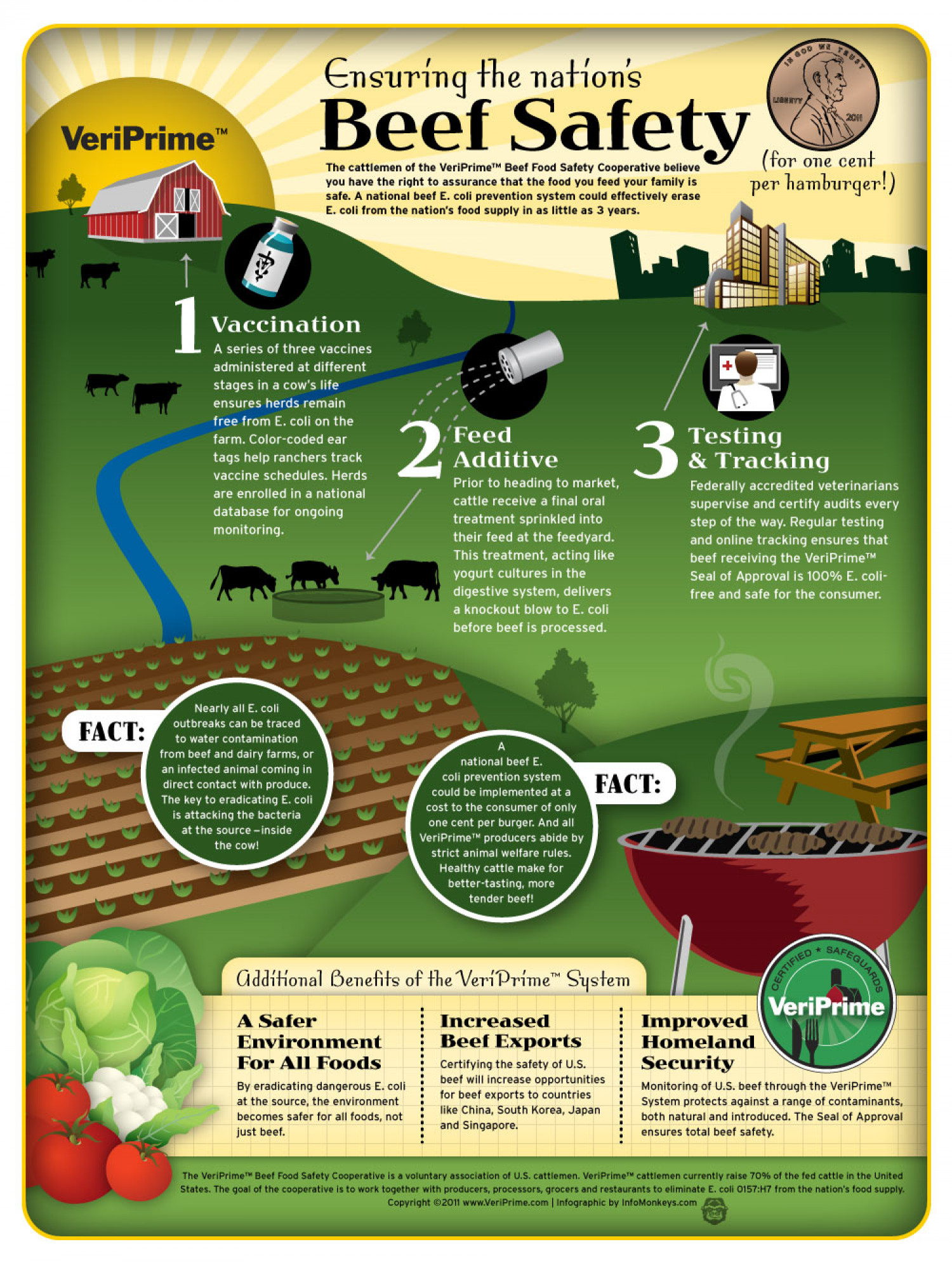 Beef Safety Infographic