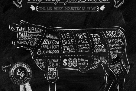 Any Way You Slice it the U.S. Beef Industry is Prime Infographic