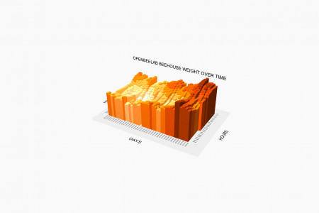Beehouse monitoring 3D Infographic