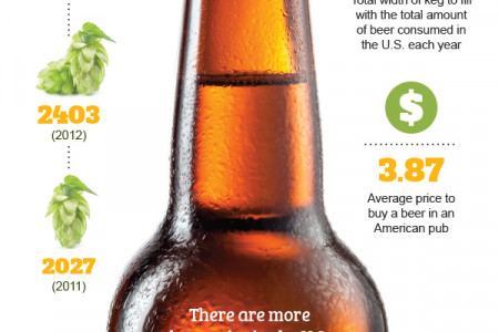 Beer Consumption in the United States Infographic