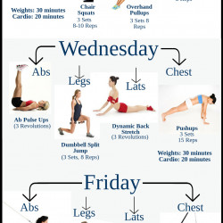 Beginner Gym Workout Plan For Lose Weight | Visual.ly