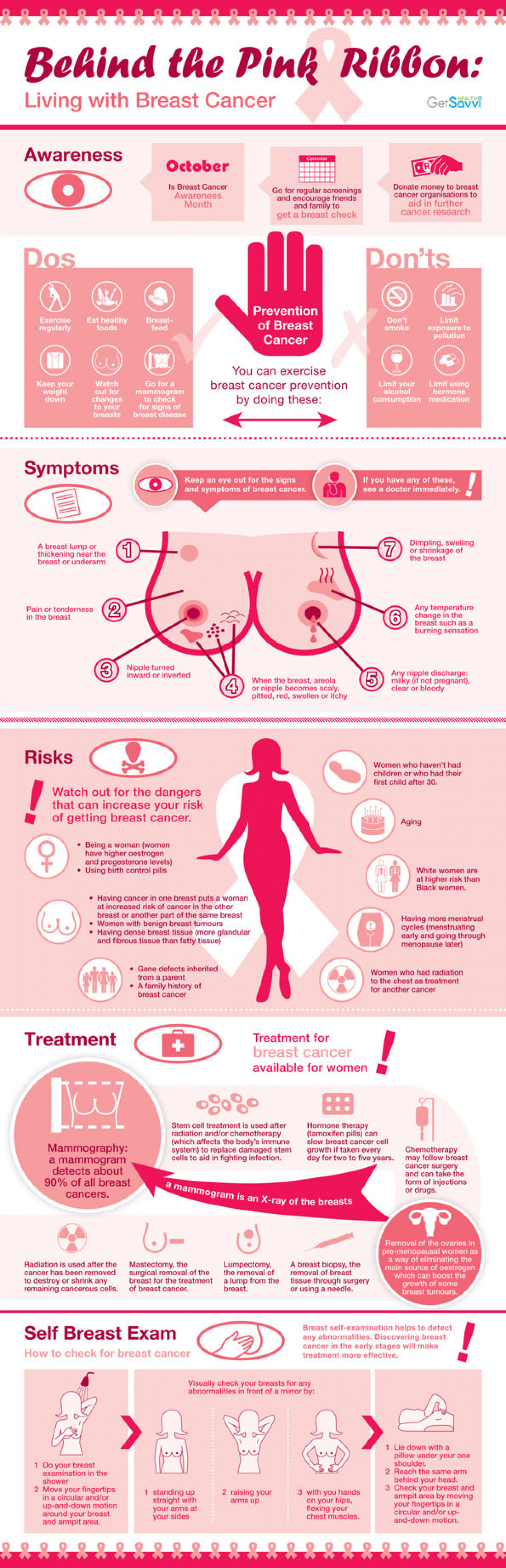 Behind the Pink Ribbon: Living with Breast Cancer Infographic