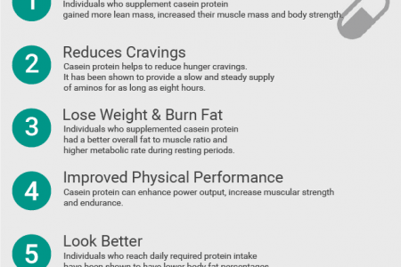 Benefits of Casein Protein  Infographic