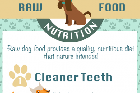 Benefits of Raw Dog Food Nutrition Infographic