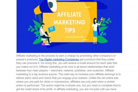 Best Affiliate Marketing Tips For Newbies Infographic