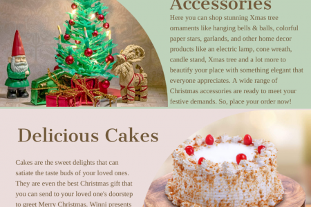 Best Christmas Gifts Online 2019 Infographic