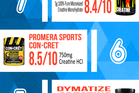 Best Creatine Supplement On The Market – 2016's Top 10 Infographic