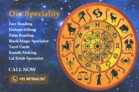 Best Face Reading Astrologer in Chandigarh. Infographic