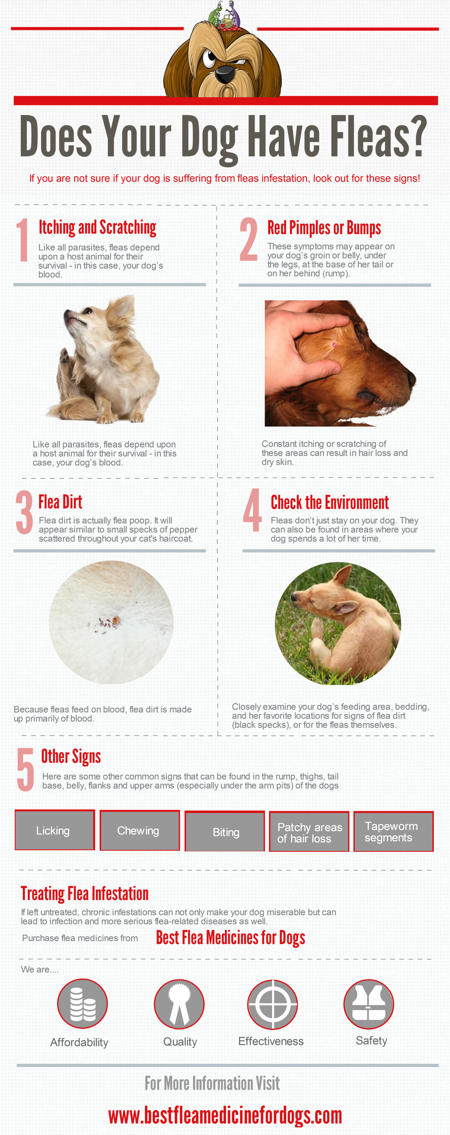 Natural Sleeping Medicine For Dogs