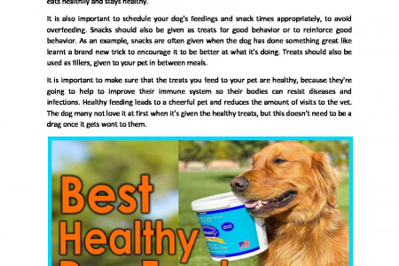 Best Healthy Dog Treats for Your Canine Friend Infographic
