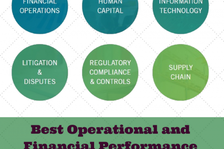Best Operational and Financial Performance at Sirius Solutions Infographic