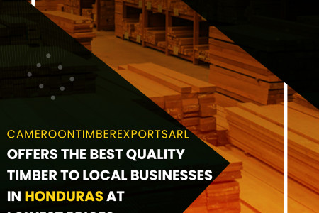 Best Quality Timber To Local Businesses In Honduras At Lowest Prices Infographic