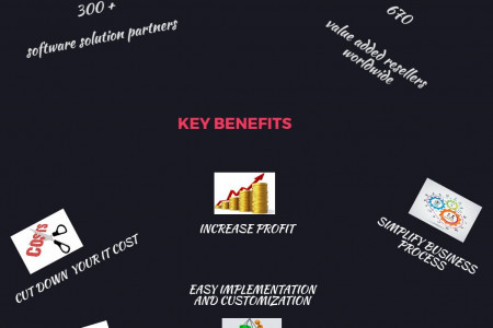Best SAP Business One Partners in India to create best solution for your business Infographic