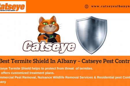 Best Termite Shield In Albany – Catseye Pest Control Infographic