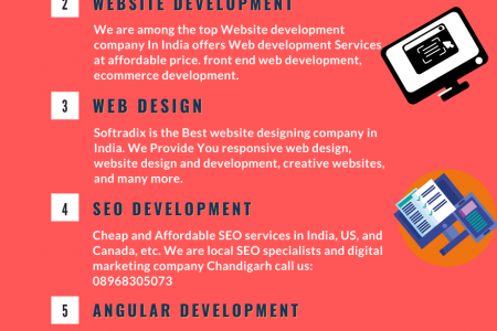 Best Website Design and eCommerce Website Design in India Hire Now   Soft Radix Infographic