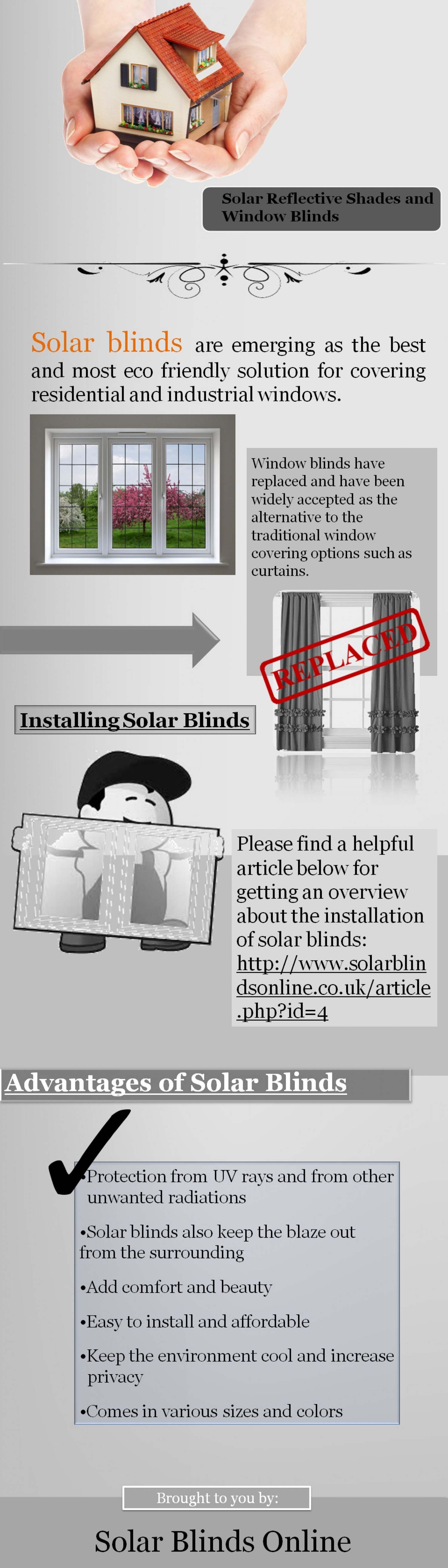 Best Window Covering Option is Here Infographic