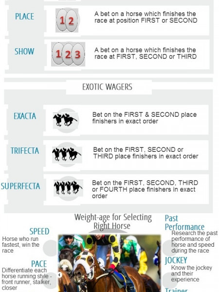Betting on Horse Racing Infographic