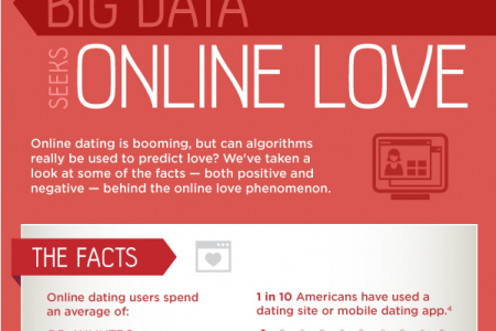 Big Data Seeks Online Love Infographic