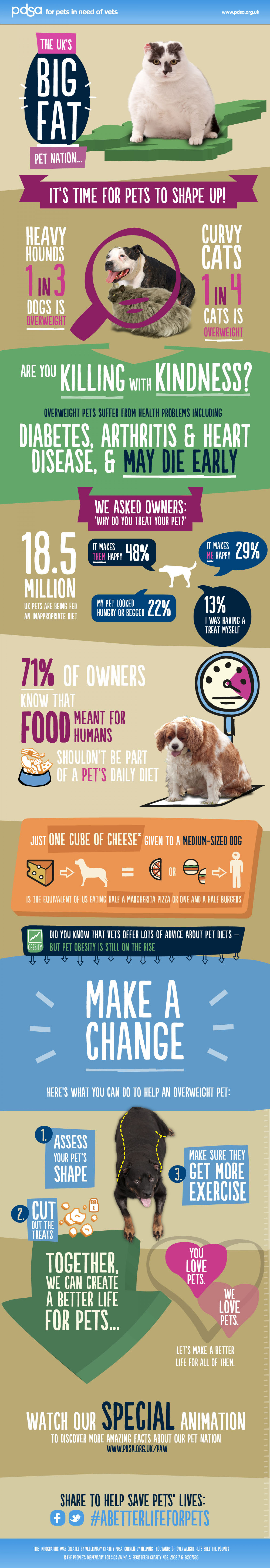 Big Fat Pet Nation: Obese Pets in The UK Facts Infographic
