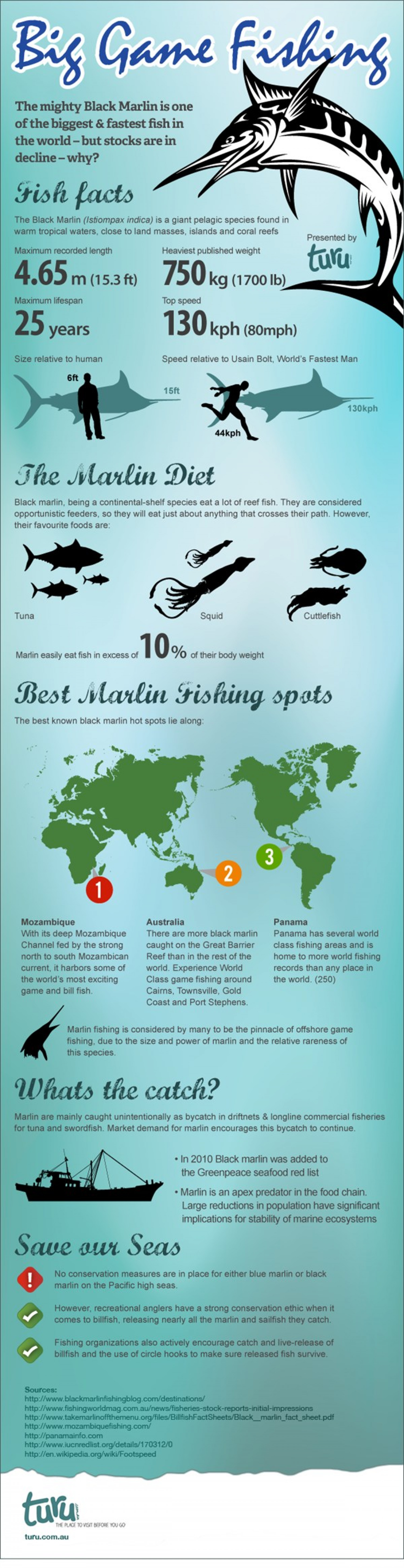 Big Game Fishing Infographic Infographic