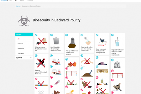 Biosecurity in Backyard Poultry Infographic