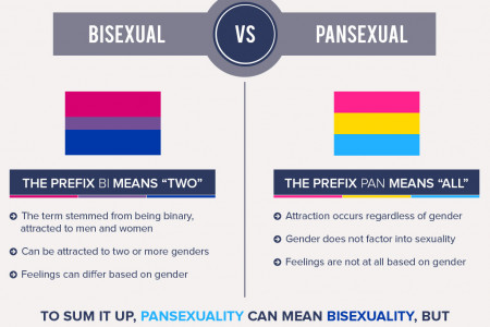 Bisexual VS Pansexual Infographic