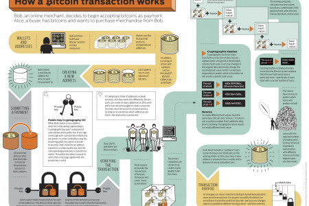 Bitcoin infographic Infographic