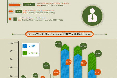 Bitcoin Wealth Distribution Infographic