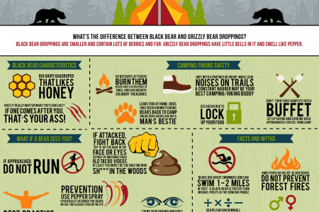 Black Bear Safety Tips Infographic