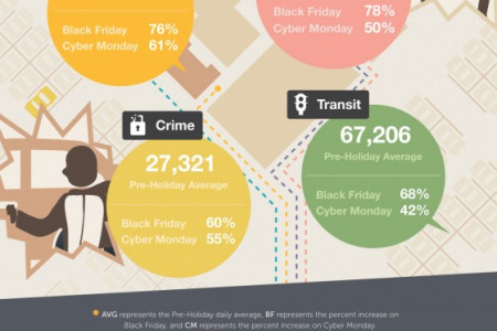 Black Friday Mayhem Infographic