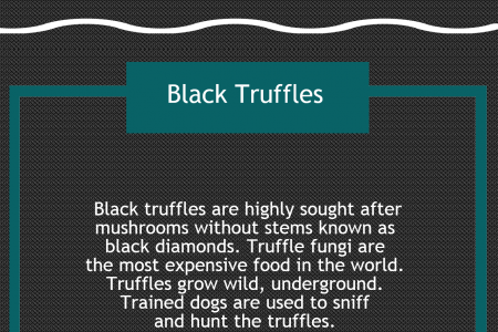 Black Truffle Salt Infographic