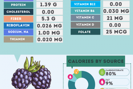 Blackberries Fruit nutrition facts Infographic