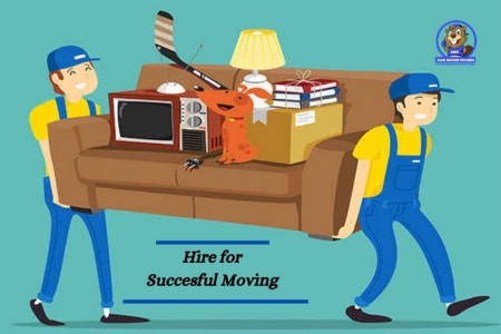Blue Beaver Movers: Hire for Successful Moving Needs Infographic