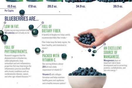 Blueberries: A Handful of Health Infographic