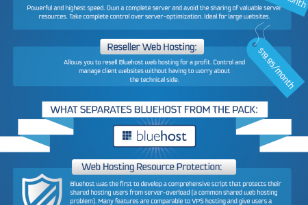 Bluehost Web Hosting  Infographic