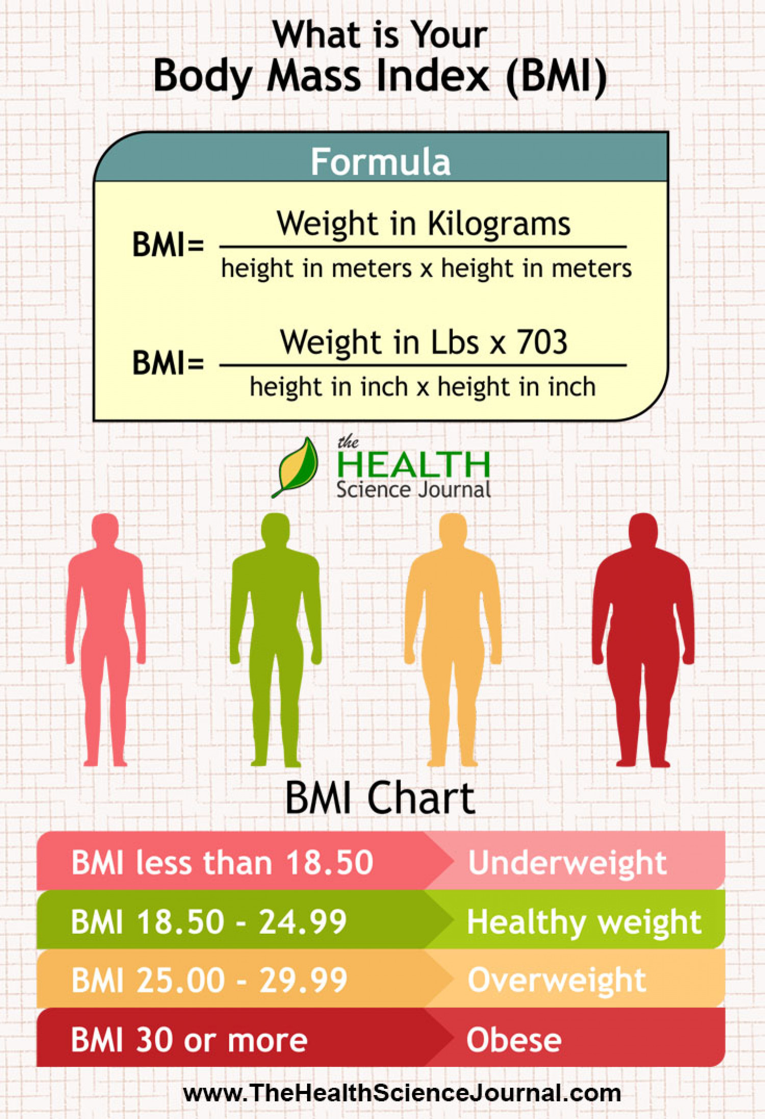 Body Mass Index (bmi) Visual How To Calculate
