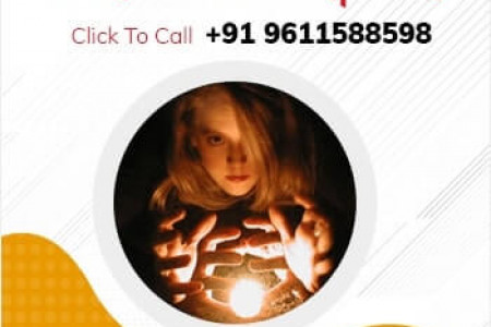 Book Your Appointment With The Top Astrologer In Bangalore. Infographic