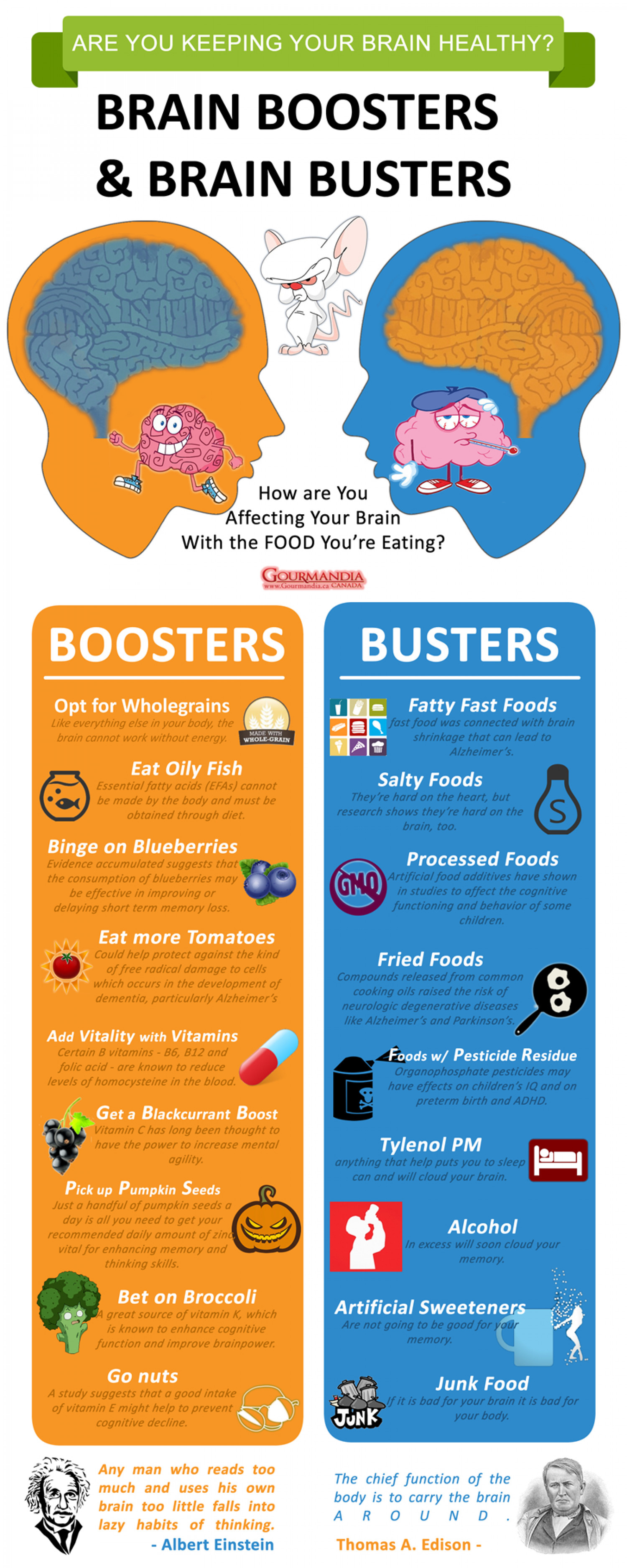 Brain Boosters and Brain Busters Infographic