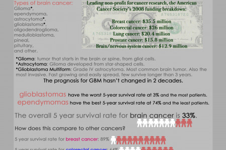 Brain Cancer Infographic Infographic