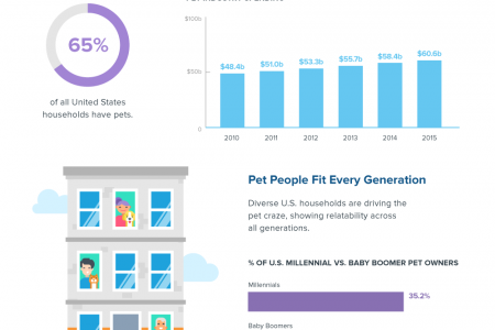 Brand Lessons From Pet Celebrities  Infographic