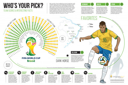 Brazil World Cup 2014: Who's Your Pick? Infographic