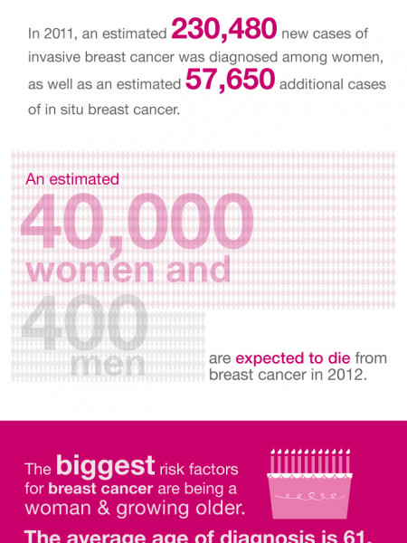 Breast Cancer by the Numbers Infographic